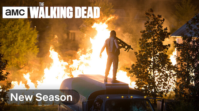The Walking Dead on Netflix USA