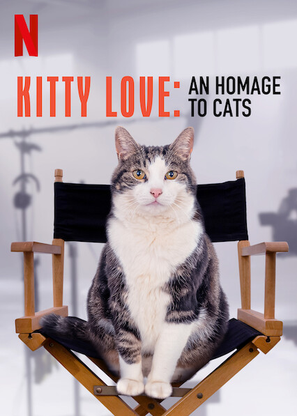 Kitty Love: An Homage to Cats on Netflix USA