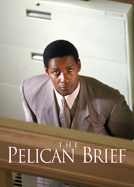 The Pelican Brief on Netflix USA