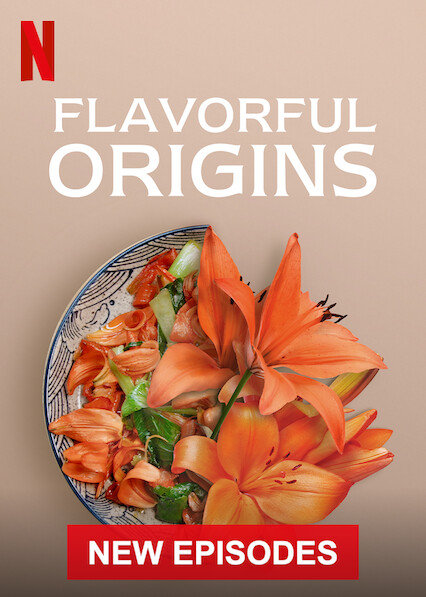 Flavorful Origins sur Netflix USA