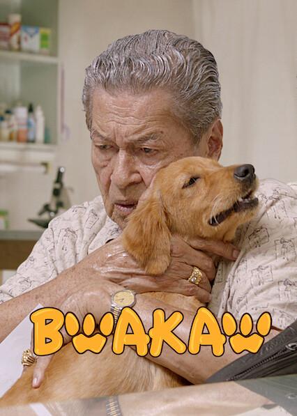 Bwakaw sur Netflix USA