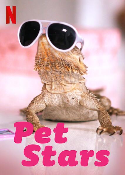 Pet Stars on Netflix USA